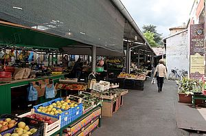 Mercato delle erbe