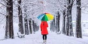 persona con ombrello nella neve