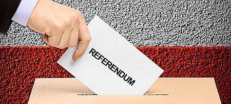 Referendum costituzionale indetto per il 29 marzo 2020