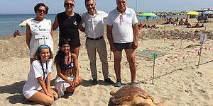 Tartaruga Luciana: ultimi giorni per inviare le proposte per il logo