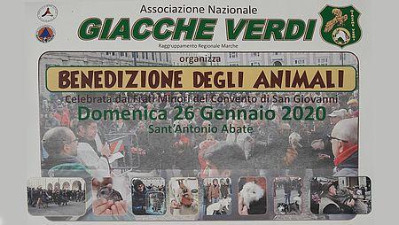 Benedizione degli animali anno 2020