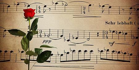 Disegno di uno spartito musicale ed una rosa