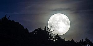 incontro osservazione Luna