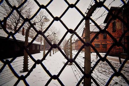 Immagine di Auschwitz