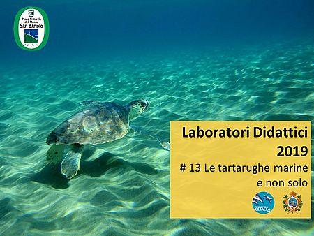 Laboratorio marino ferragosto