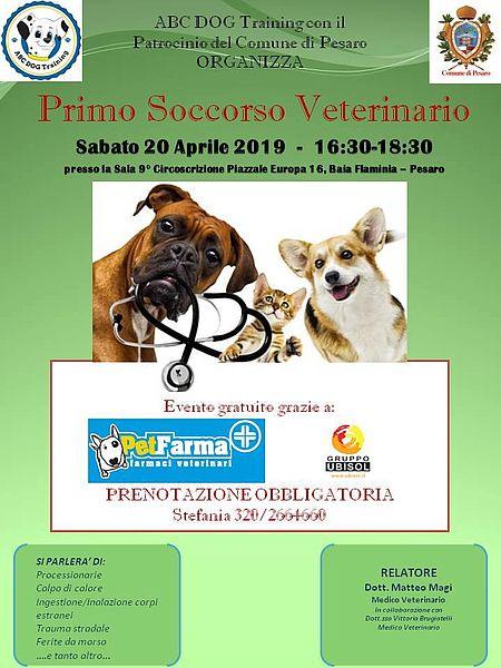 Primo soccorso veterinario locandina
