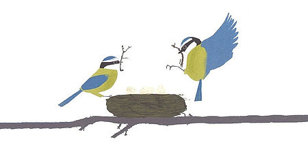 Particolare immagine di Thomas Hegbrook di un libro raffigurante due uccelli ed un nido