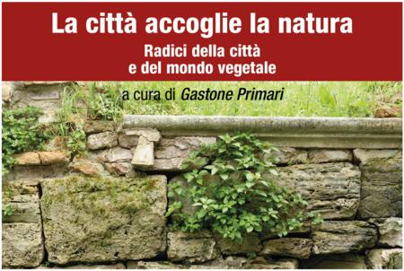 muro di pietra con vegetazione particolare immagine locandina