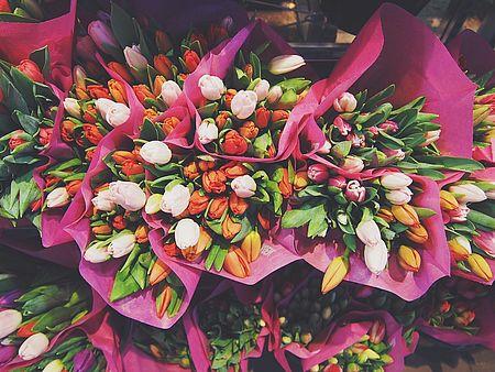 mazzi di tulipani