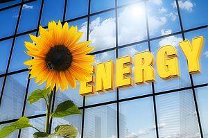 girasole con la scritta energy in giallo, sfondo vetrata palazzo