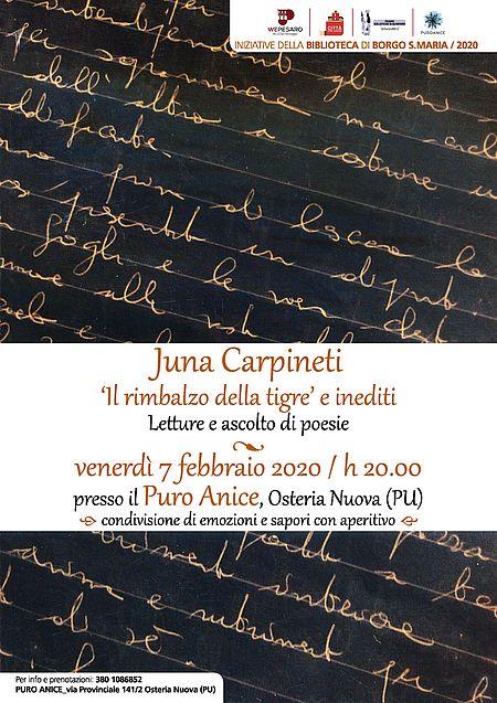 Juna Carpineti. 'Il rimbalzo della tigre'