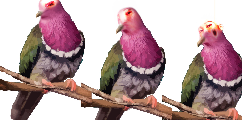 Immagine di un uccello che si trasforma in una persona